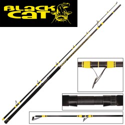 Black Cat Passion DX 600g 270cm